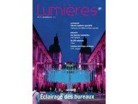 Lumières N°17 © CNRS, Éric Michel, Adagp Paris 2016 et Akari-Lisa Ishii