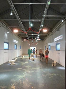 © Véronique Descatoire Albano, Case 12. 1er étage - Salle d'exposition temporaire.