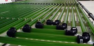 Les photobioréacteurs servent aussi de régulateurs thermiques