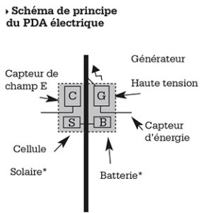 schema-pda-web