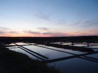 Lumières sur les marais salants. Batz-sur-mer. © Isabelle Arnaud